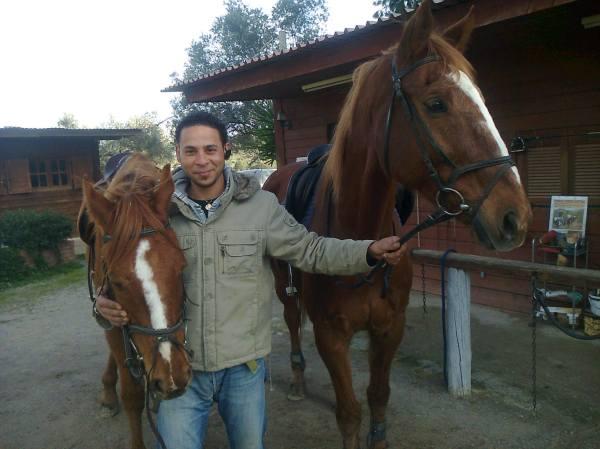 Ιππικός ομιλος Ερέτριας, χαρίζεται άλογο!